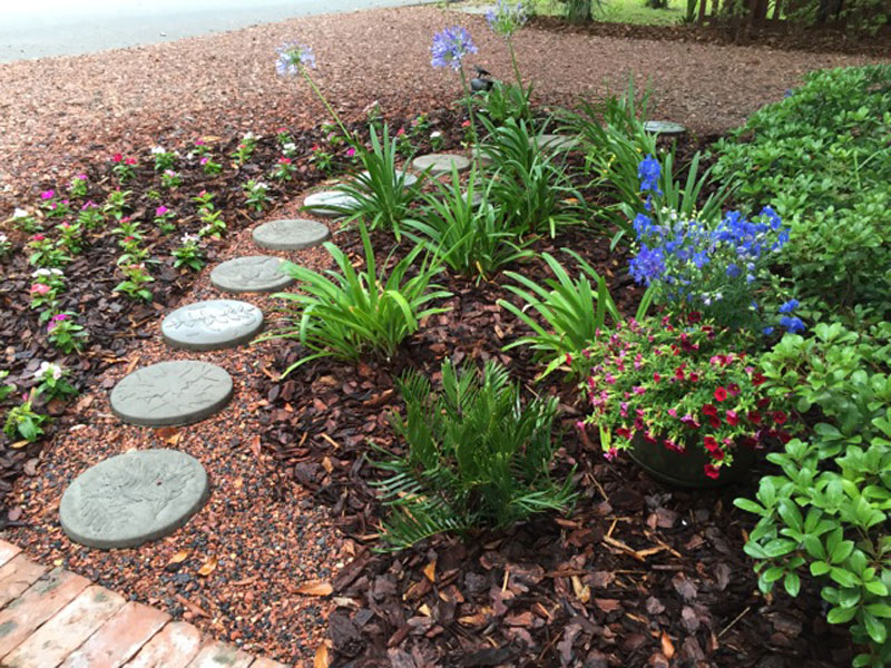 Landscaping Groundcovers Walking Paths